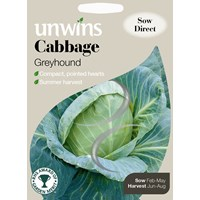 Unwins  Cabbage Greyhound Vegetable Seeds