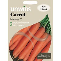Unwins  Carrot Nantes 2 Vegetable Seeds